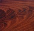 Acajou mahogany